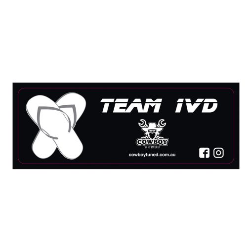 Team 1VD Sticker